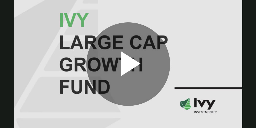 LCG_fund_Detail_video